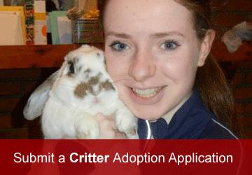 Critter Adoption Application
