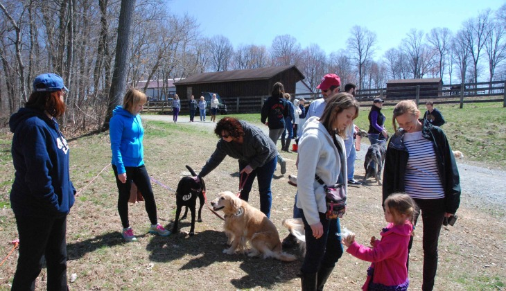Photo Album: SNF Dog Show Spring 2015