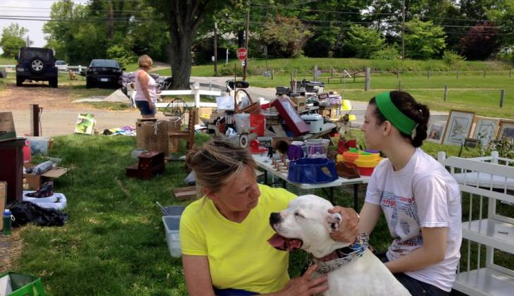 Photo Album: Flea Market – May 2015