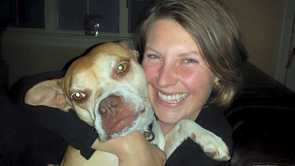 rescue dog adoption pa